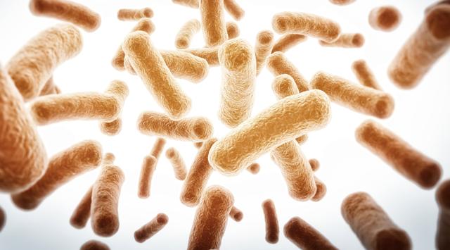 Аналіз калу на дисбактеріоз: підготовка і розшифровка аналізу