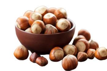 Фундук: калорійність, користь і шкода горіха для організму чоловіків і жінок, вміст білків, жирів, вуглеводів