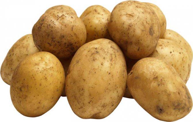 3161592 - Картопля від мішків під очима