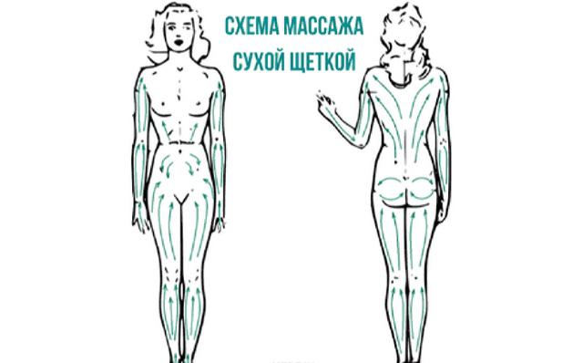 Масажна щітка від целюліту: техніка та принцип проведення масажу в домашніх умовах