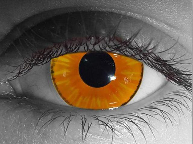 Одноденні контактні лінзи: відгуки, скільки можна носити, рейтинг кращих одноразових моделей