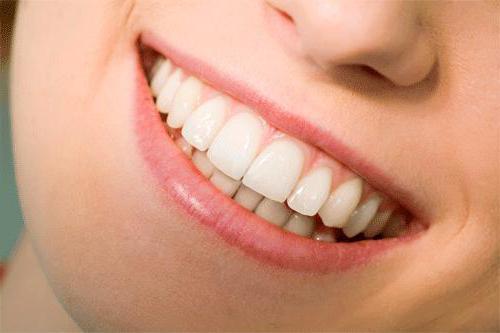 апарат вектор в стоматології інструкція із застосування