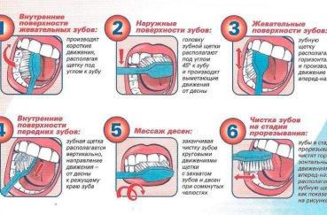 Коли змінюються зуби у дітей на постійні