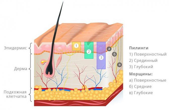 Кораловий пілінг для обличчя. Що це таке, фото до і після, результати