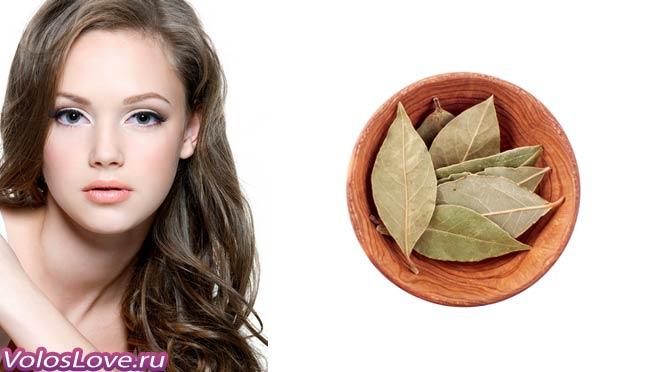 Лавровий лист від випадіння волосся маски користь