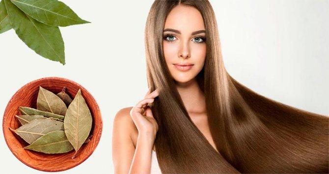 лавровий лист проти випадіння волосся