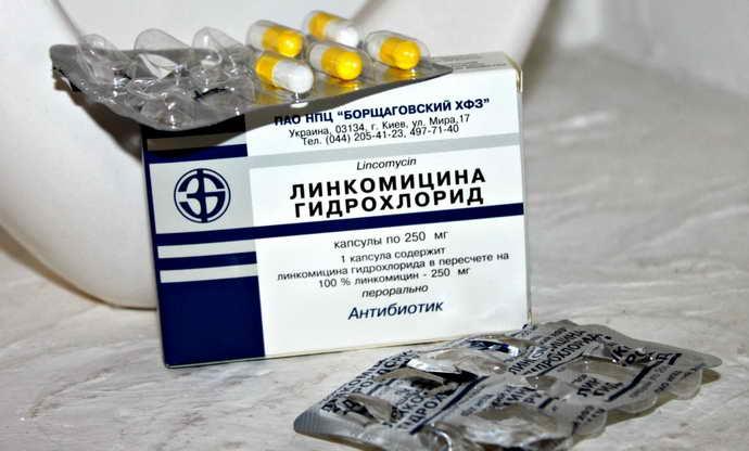 Лінкоміцин від флюсу