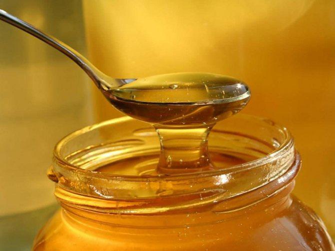 Мед з відваром цибулі від папілом