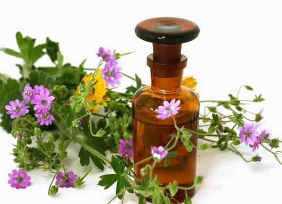 Натуральний мед для лікування запалення ясен