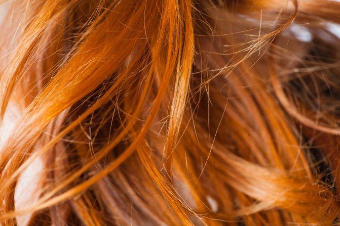 Фарбування волосся хною і басмою сивого волосся