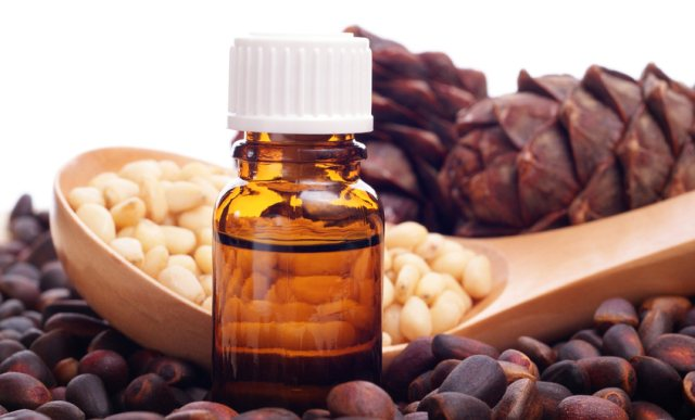 Користь і шкода кедрового масла