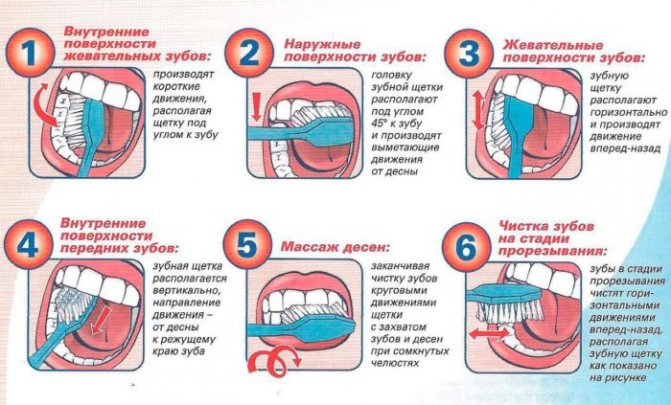 профілактика зубів