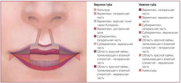Проведенні естетичної корекції губ