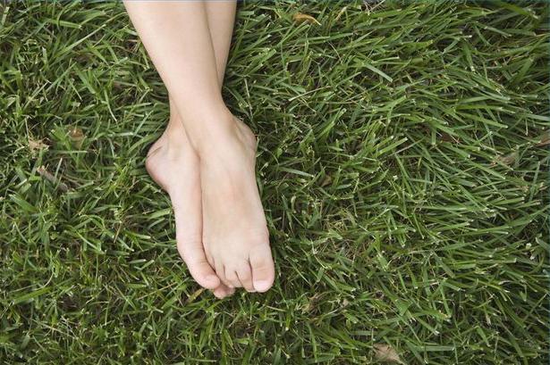 шіпіци на ступнях ніг