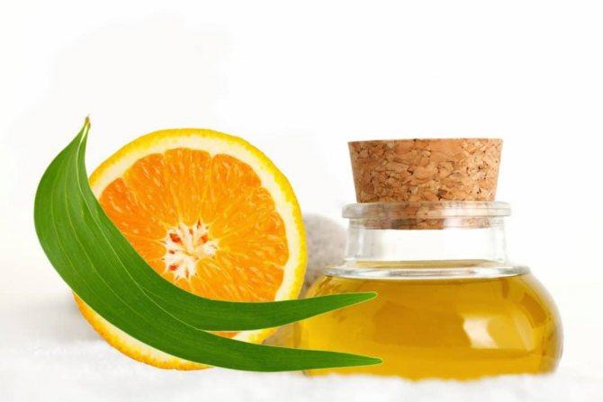 Властивості ефірного масла апельсина