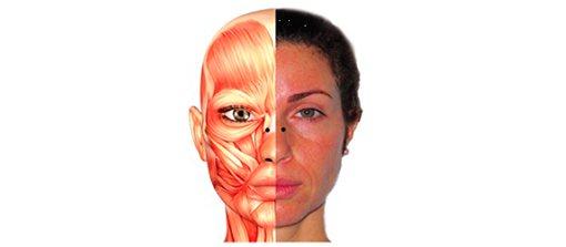 Точки введення БТА в стінки носа