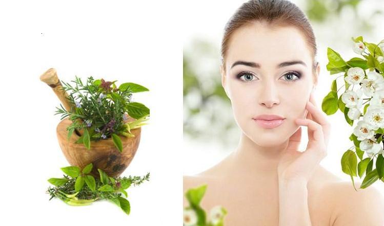 Трави для обличчя - секрет молодості шкіри?