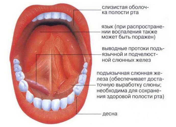 запалення під язиком ніж небезпечно