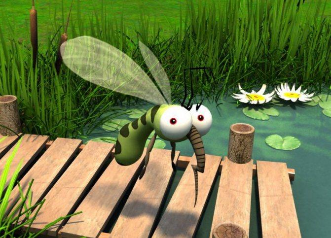 Запах евкаліпта відлякує комах
